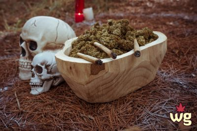Halloween and cannabis culture